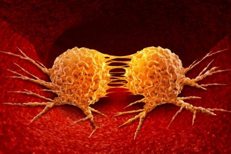 The science behind cancer makes it difficult to cure